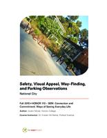 Safety, Visual Appeal, Way-finding, and Parking Observations