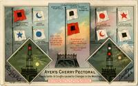 "Dr. J. C. Ayer & Co., ""Ayer's Cherry Pectoral / Cures Colds & Coughs Caused by Changes in the Weather"" (Front)"